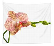 Orchid Flower Tapestry
