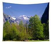 Swiss Alps Tapestry