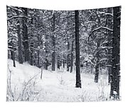 Winter In Pike National Forest Tapestry