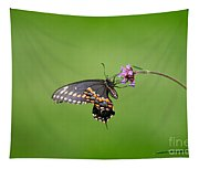 Black Swallowtail Butterfly  Tapestry