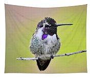 Costa's Hummingbird  Tapestry