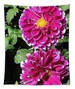 Dahlia Named Edinburgh Tapestry