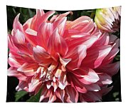 Dahlia Named Myrtle's Brandy Tapestry