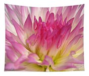 Dahlia Named Star Elite Tapestry