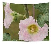 Hollyhock Named Indian Spring Pink Tapestry