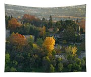 The Alhambra Palace Tapestry