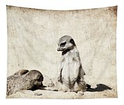 Meerkatz Tapestry
