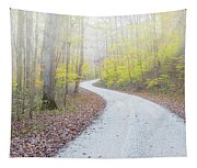Road Passing Through A Forest Tapestry