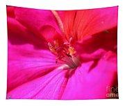 Zonal Geranium Named Tango Neon Purple Tapestry