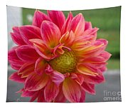 Dahlia Named Brian's Sun Tapestry