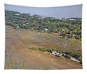East Coast Aerial Near Jekyll Island Tapestry