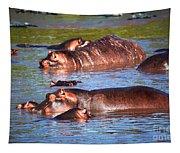 Hippopotamus In River. Serengeti. Tanzania Tapestry