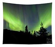 Yukon Taiga Spruce Northern Lights Aurora Borealis Tapestry