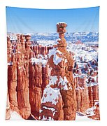 Eroded Rocks In A Canyon, Bryce Canyon Tapestry
