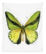 8 Goliath Birdwing Butterfly Tapestry by Amy Kirkpatrick