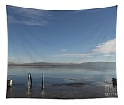 Lakefront Tapestry