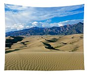 Sand Dunes In A Desert, Great Sand Tapestry