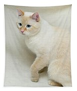 Flame Point Siamese Cat Tapestry