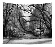 9 Black And White Artistic Painterly Icy Entrance Blocked By Braches Tapestry