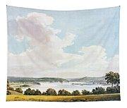Mount Vernon Tapestry