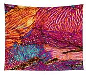 Myrmekite Tapestry
