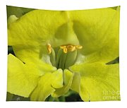 Snapdragon From The Mme Butterfly Mix Tapestry