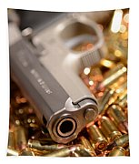 9mm Sw With Brass Tapestry