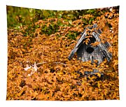 A Bird House Sits Empty In Fall Tapestry