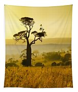A Boab Sunrise Tapestry