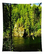 A Boulder Across The Seleway River  Tapestry