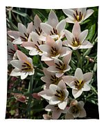 A Bouquet Of Miniature Tulips Celebrating The Spring Season - Vertical Tapestry
