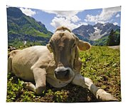 A Calf In The Mountains Tapestry