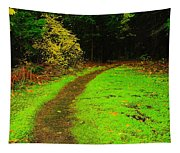 A Carpted Path Tapestry