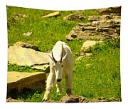 A Goat Coming Down The Trail Tapestry