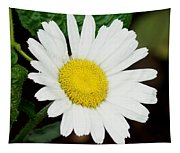 A Daisy If You-do Tapestry