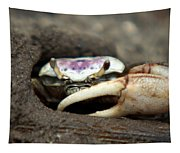 A Fiddler Crab Around Hilton Head Island Tapestry