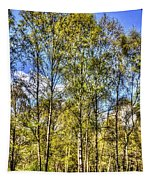 A Forest Glade Tapestry