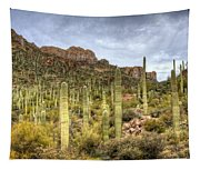 A Forest Of Saguaros  Tapestry