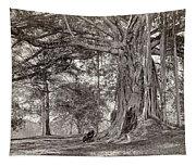 A Gentleman Sitting Beneath A Large Native Tree In British Ceylon Tapestry