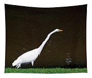 A Great Egret On Hilton Head Island Tapestry