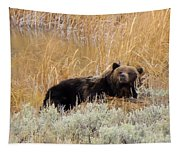 A Grizzily On A Buffalo Carcass Tapestry