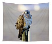 A Hawk On A Fence Post  Tapestry