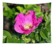 A Hornet And Beach Rose Tapestry