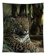 A Jaguar's Gaze Tapestry