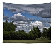 A July Cold Front Rolling By Tapestry