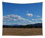 A June Panorama In Southern Oregon Tapestry