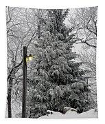 A Light Snow Tapestry