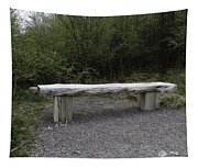 A Long Stone Section Over Wooden Stumps Forming A Rough Sitting Area Tapestry