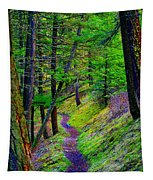 A Magical Path To Enlightenment Tapestry