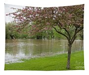 A New Pond Tapestry